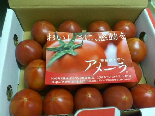トマト「アメーラ」